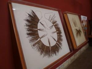 Museum Leymebamba, Quipus; Foto: Wolfgang Schmale, 28.8.2015