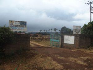 Kenya, Mt Kenya NP, Chogoria, EU funding; Photo: Wolfgang Schmale