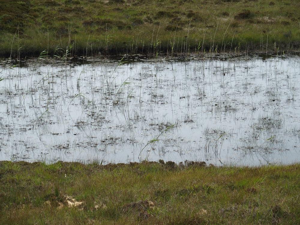 South Uist, Tümpel, Moore, Feuchtgebiete